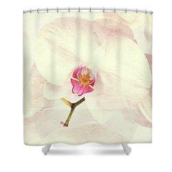 Vintage White Orchids Shower Curtain