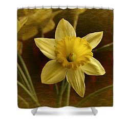 Vintage Yellow Narcissus Shower Curtain