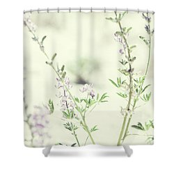 Violet And Green Bloom Shower Curtain by Amyn Nasser