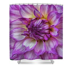 Violet Glow Shower Curtain by Patricia Strand