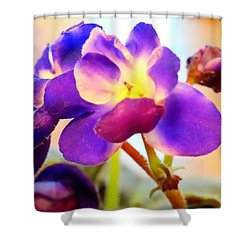 Violet In Bloom Shower Curtain