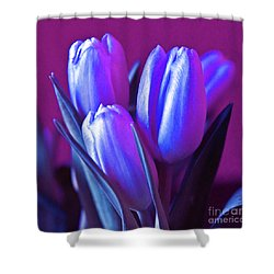 Violet Poetry Of Spring Shower Curtain