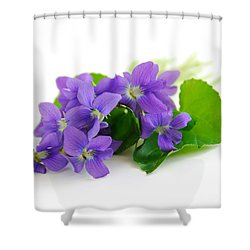Violets On White Background Shower Curtain by Elena Elisseeva