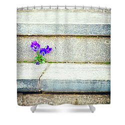 Shower Curtain featuring the photograph Violets    by Silvia Ganora