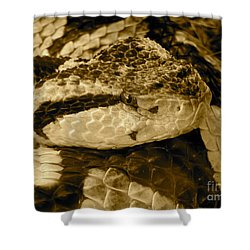 Viper's Glare Shower Curtain