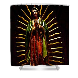 Virgin Of Guadalupe Shower Curtain