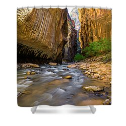 Virgin River - Zion National Park Shower Curtain