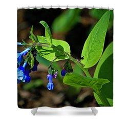 Virginia Bluebells Shower Curtain