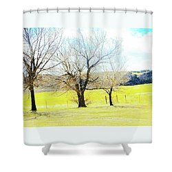 Virginia Dale-three Trees Shower Curtain by Lenore Senior