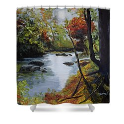 Virginia Lovely Stream Shower Curtain