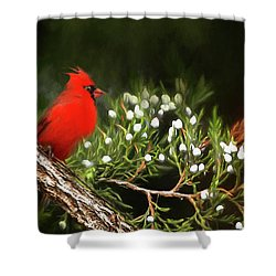 Shower Curtain featuring the photograph Virginia State Bird by Darren Fisher