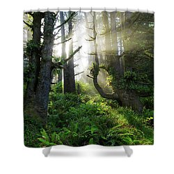 Shower Curtain featuring the photograph Vision by Chad Dutson