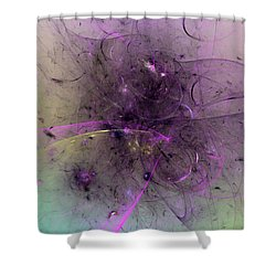 Vision Of The Twelve Goddesses Shower Curtain