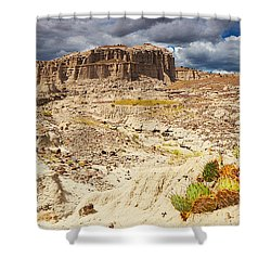 Vision Quest Shower Curtain by Kate Livingston