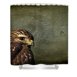 Visions Of Solitude Shower Curtain by Evelina Kremsdorf