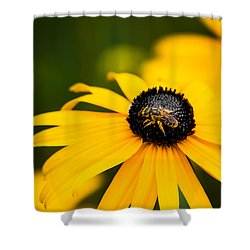 Visitor In The Garden Shower Curtain by Shelby  Young
