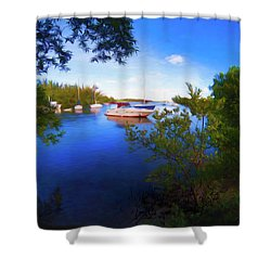 Vista Series Grpr0382 Shower Curtain
