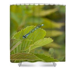 Vivid Dancer On Leaves Shower Curtain
