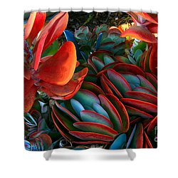 Vivid Paddle-leaf Succulent Shower Curtain