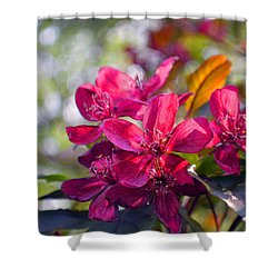 Vivid Pink Flowers Shower Curtain