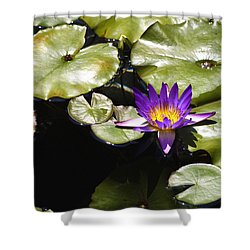 Vivid Purple Water Lilly Shower Curtain by Teresa Mucha