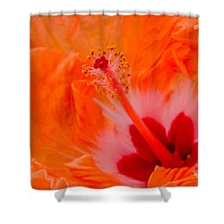 Shower Curtain featuring the photograph Volcanic Eruption by Cathy Donohoue