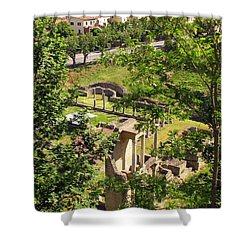 Volterra's Roman Ruins Shower Curtain