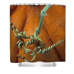 Voluptuous Autumn Shower Curtain by Laurie Paci