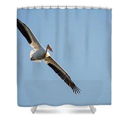 Voyage Shower Curtain by Brian Duram