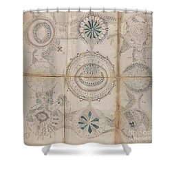 Voynich Astro 3x3 Shower Curtain