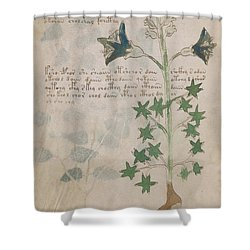 Voynich Flora 03 Shower Curtain