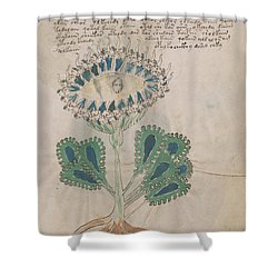 Voynich Flora 11 Shower Curtain