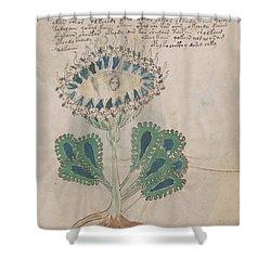 Voynich Flora 11 Shower Curtain