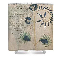 Voynich Flora 12 Shower Curtain