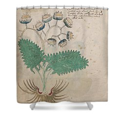 Voynich Flora 14 Shower Curtain