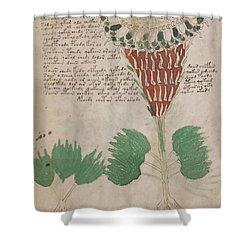Voynich Flora 15 Shower Curtain