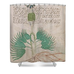 Voynich Flora 16 Shower Curtain