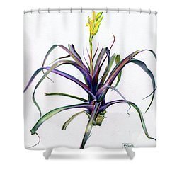 Vriesea Bleheri Shower Curtain