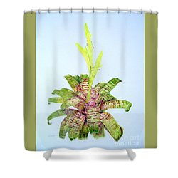 Vriesea Ospinae Var. Gruberi Shower Curtain
