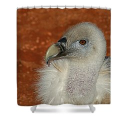 Vulture Portrait Shower Curtain