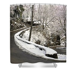 W Road In Winter Shower Curtain