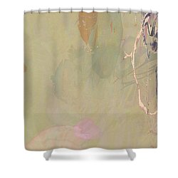 Wabi Sabi Ikebana Revisited Shabby 2 Shower Curtain
