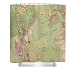 Wabi Sabi Ikebana Revisited Shabby 3 Shower Curtain