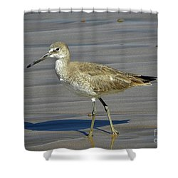 Wading Day Shower Curtain by Sheila Ping