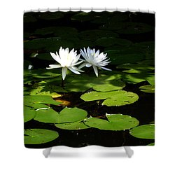 Wading Fairies Shower Curtain