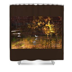 Wading In Light Shower Curtain