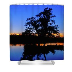 Wagardu Lake, Yanchep National Park Shower Curtain by Dave Catley