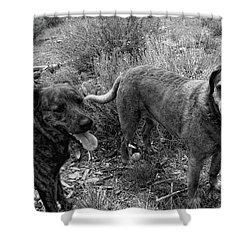 Wagging Tongues Shower Curtain by Donna Blackhall