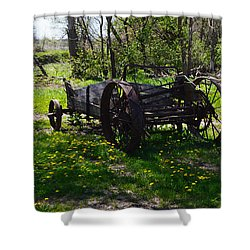 Wagon And Dandelions Shower Curtain