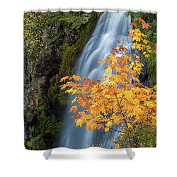 Wah Gwin Gwin Falls In Autumn Shower Curtain by David Gn